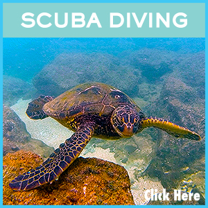 Scuba Diving Charter links