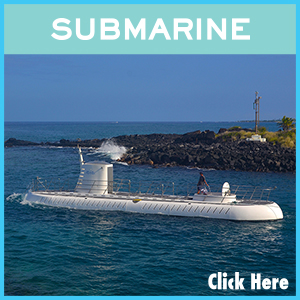 Submarine links